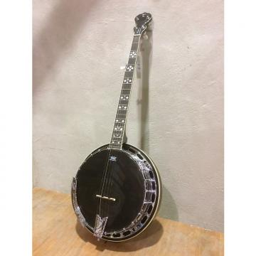 Custom Tanglewood TWB-PRO-5 5 String Banjo, 24 Brackets, Mahogany Resonator,Tone Ring,  Remo Black Head