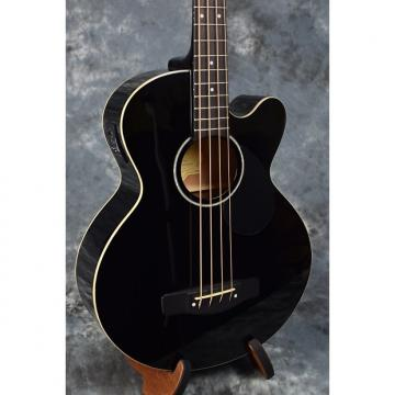 Custom Greg Bennett AB2 Acoustic Bass with Pickup - Black