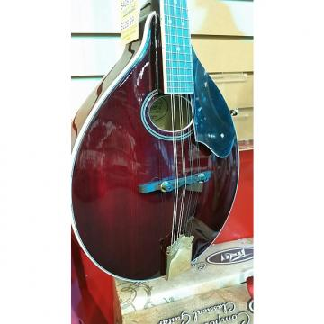 Custom Best Beginner Washburn A Style Mandolin (M1SDLTR)