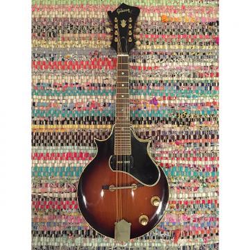 Custom 1966 Gibson EM-200 Electric Mandolin