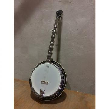 Custom Tanglewood TWB-USA-5 5 String Banjo, 24 Brackets, Remo Vintage Renaissance Head,  Tone Ring,  Mahogany Resonator HI Gloss Finish