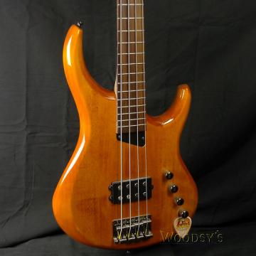 Custom MTD Kingston Artist 4 String Bass