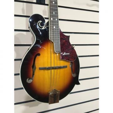 Custom Fender FM-63S W/ Hardcase
