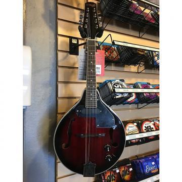 Custom Stagg M50 E Redburst Electric Mandolin^
