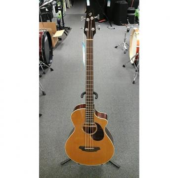 Custom Breedlove  Acoustic Bass Passport Plus B350/CBe4