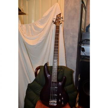 Custom ESP LTD b-104 bass guitar Plum color