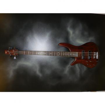 Custom Ibanez SR500