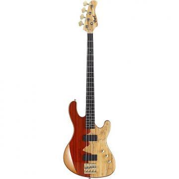 Custom Cort Jeff Berlin Series Rithimic Bass Guitar Natural Rosewood