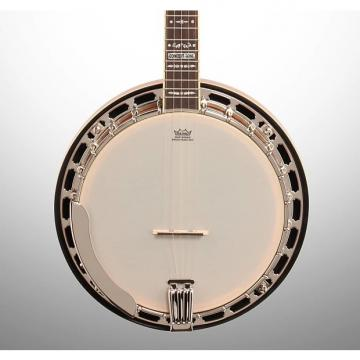 Custom Fender FB-55 Concert Tone Banjo, 3-Color Sunburst
