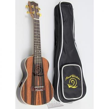 Custom Amahi Snail Series Ebony Ukulele - No Electronics