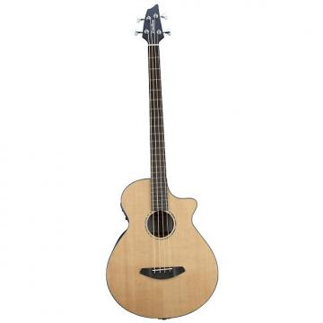 Custom BREEDLOVE SOLO BASS