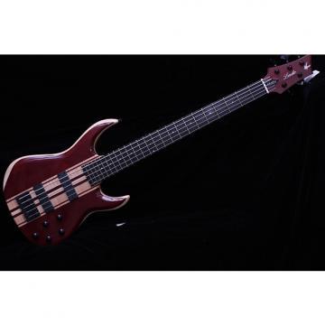Custom Lado 5 String Studio Bass
