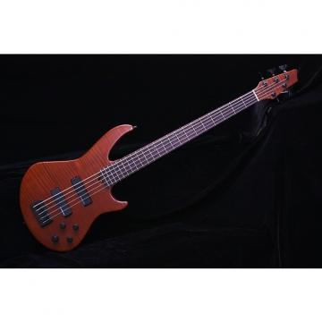 Custom Godin BG5  5 String Bass