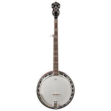 Custom Washburn B16K Tobacco Sunburst 5-String Banjo w/ Case