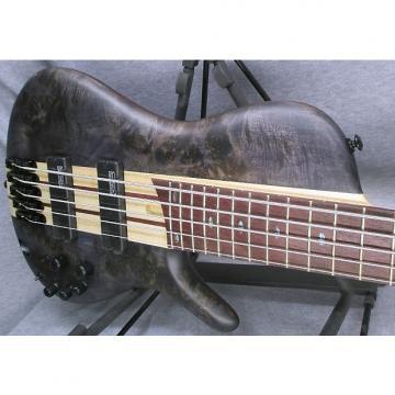 Custom Ibanez SRSC805 5 String Bass
