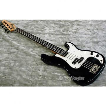 Custom ESP Custom Precision Bass