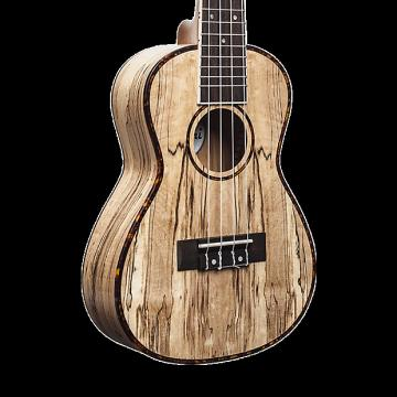 Custom Amahi UK770C Classic Spalted Maple Ukulele - Concert with Gig Bag