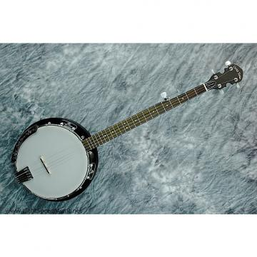 Custom Gold Tone CC-BG 5-String Resonator Banjo Package w/ Gig Big, Learning DVD & More