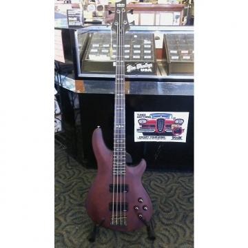 Custom Schecter Omen Extreme 4 String Bass Guitar WSN