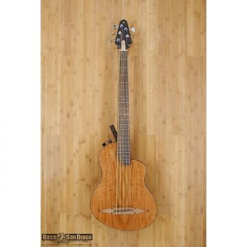 Custom Rick Turner Renaissance RB5FL 5 String Fretless Bass