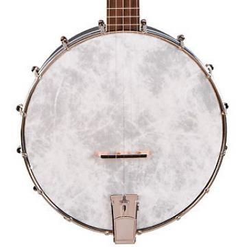 Custom Recording King Starlight Open Back Banjo Sky