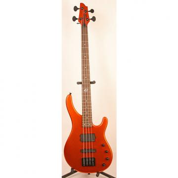 Custom Washburn Stu Hamm Electric Bass