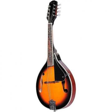 Custom Fender FM-100 8-String A-Style Mandolin Package
