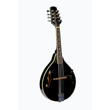 Custom Glen Burton Black Mandolin Teardrop Style with soft case Free Shipping