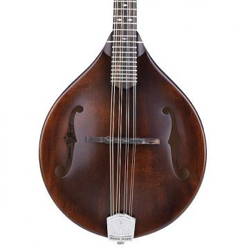 Custom Weber Gallatin A14-F Mandolin