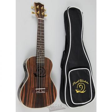 Custom Amahi Snail Series Ebony Ukulele - With Electronics