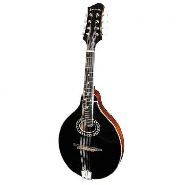 Custom Eastman Oval Hole Mandolin MD404