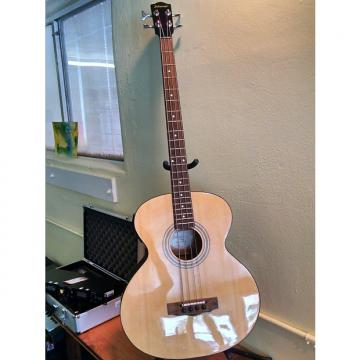 Custom Johnson AXL 4-String Acoustic/Electric Bass
