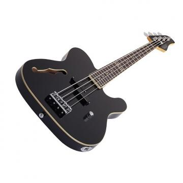 Custom Schecter dUg Pinnick Baron-H 4 String Bass