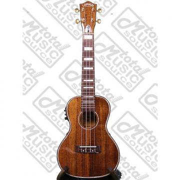 Custom Lanikai Hawaiin Concert Ukulele UkeSB, Hawaiin Koa, USB Equipped, LK-CEU