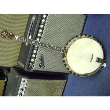 Custom Vega VEGAPHONE PROFESSIONAL TENOR BANJO 1928 BROWN