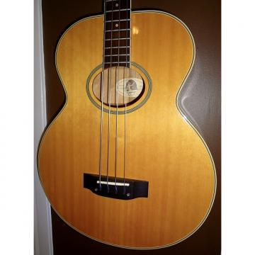 Custom 1994 Epiphone El Capitan Acoustic/Electric Bass