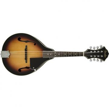Custom Fender Concert Tone Mandolin Pack