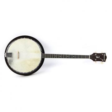 Custom 1950's Harmony Tenor Banjo