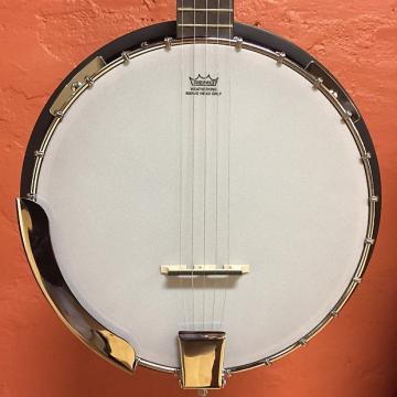 Custom Savannah SB-100 5-String Resonator Banjo