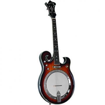 Custom Gold Tone EBM-4 Electric Tenor Banjo 4-string