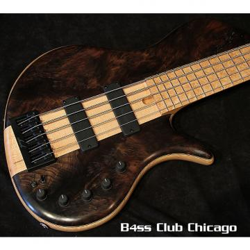 Custom Elrick Platinum E-vo 5 Single Cut Redwood Burl