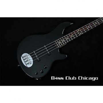 Custom Lakland US Classic 44 Dual J Black