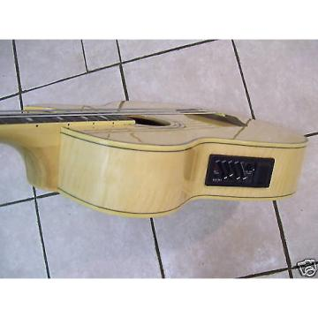 Custom Bass guitar, acoustic electric,  Wood