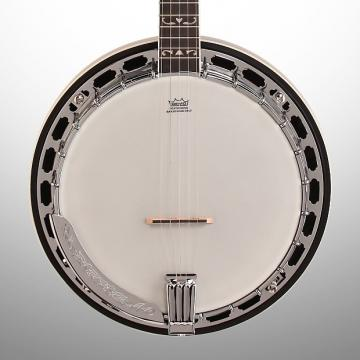 Custom Washburn B16K Banjo