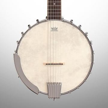 Custom Washburn B6 Banjo, 6-String