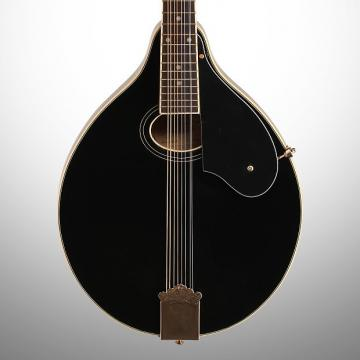 Custom Washburn M1SDL A-Style Mandolin