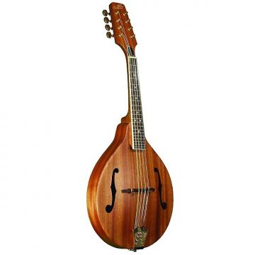 Custom Morgan Monroe A Style Mahogany Mandolin W/Case
