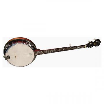 Custom Morgan Monroe 18 Bracket Banjo With Pickup System