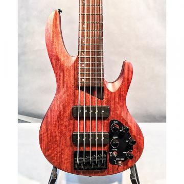 Custom ESP LTD B-1005SE 5-String Electric Bass