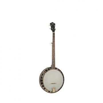 Custom Recording King RKS-06-DBL Midnight Starlight Series Resonator Banjo